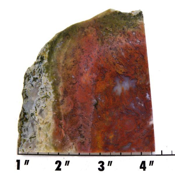 Slab1286 - Red Flame Agate Agate Slab
