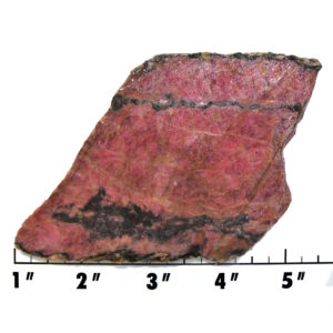 Slab1961 - Rhodonite with Cuprite slab