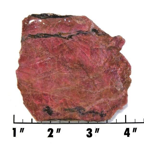 Slab1967 - Rhodonite with Cuprite slab