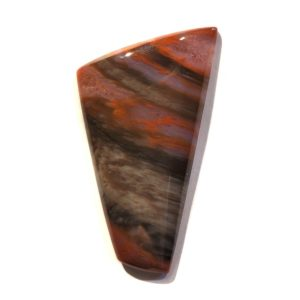Cab123 - Petrified Wood