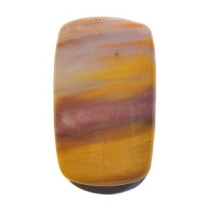 Cab2861 - Petrified Wood