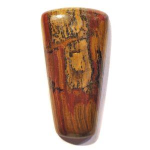 Cab318 - Petrified Wood