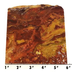 Slab2185 - Marston Ranch Agate