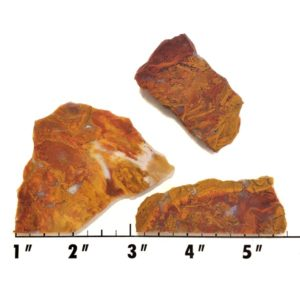 Slab1908 - Rooster Tail Agate