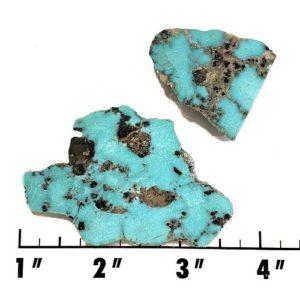 Slab2225 - Sonoran Blue Turquoise slab