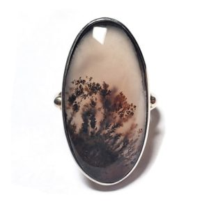 Dendritic Agate Ring #14