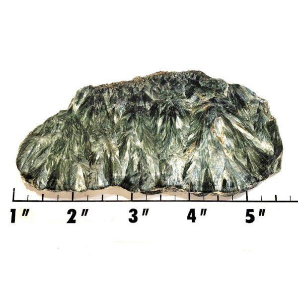 Slab269 - Seraphinite Slab