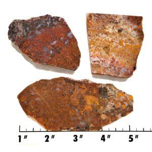 Slab1106 - Bloody Basin Agate Slabs