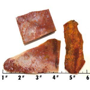 Slab1113 - Bloody Basin Agate Slabs