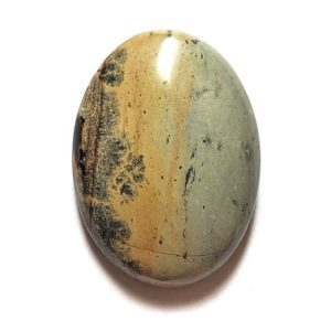 Cab1526 - Paint Brush Jasper Cabochon