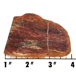 Slab1665 - Plasma Agate Slab
