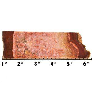Slab573 - Confetti Agate Slab