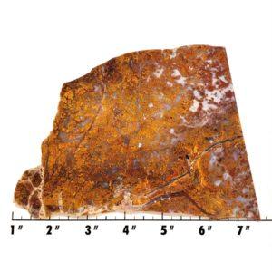 Slab757 - Bloody Basin Agate Slab
