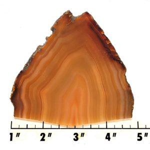 Slab781 - Brazilian Agate Slab
