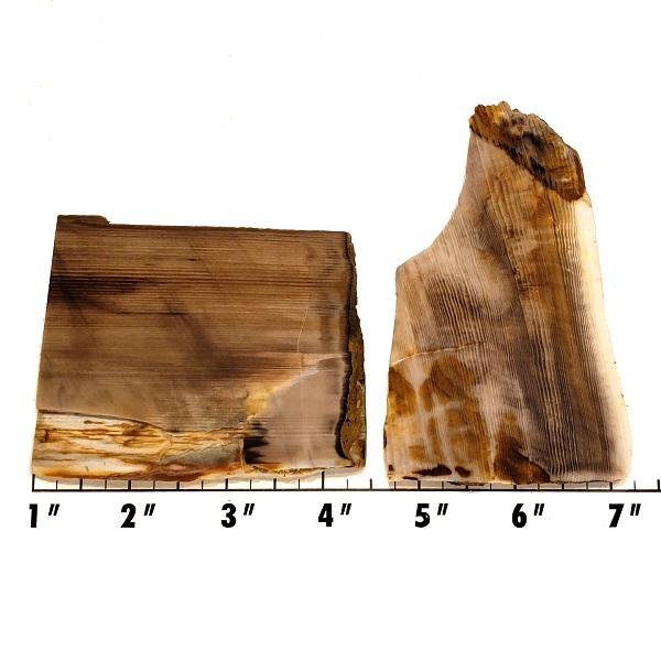 Slab608 - Opalized Wood Slab