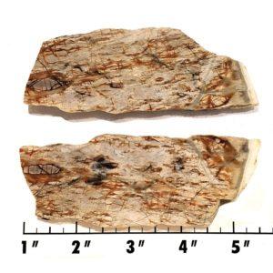 Slab758 - Picasso Marble slab
