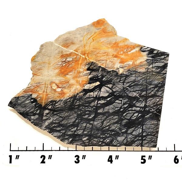 Slab761 - Picasso Marble slab