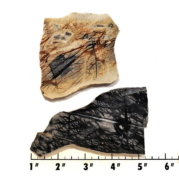 Slab765 - Picasso Marble slab