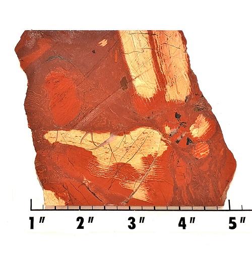 slab551 - Red Snakeskin Jasper