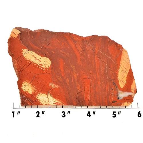 slab552 - Red Snakeskin Jasper