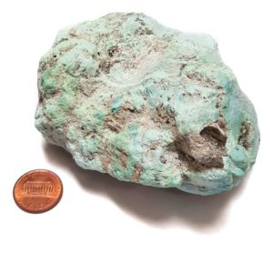 Campitos Stabilized Turquoise Large Size Rough - $295.00/pound (~$0.65/gram)