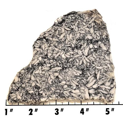 Slab694 - Pinolith Slab