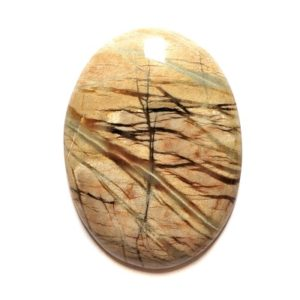 Cab110 - Picasso Marble Cabochon