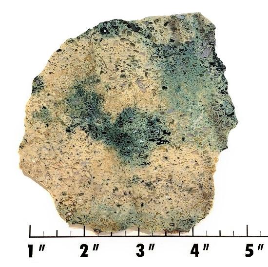 Slab237 - Pogo Agate Slab