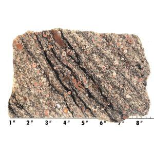 Slab371 - Crinoid Marble Slab