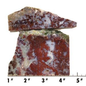 Slab753 - Red Lightning Agate Slabs