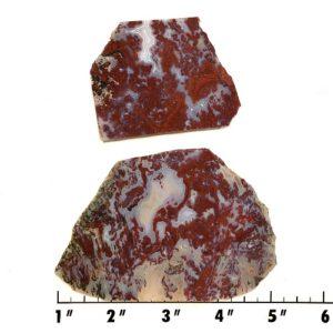 Slab769 - Red Lightning Agate Slabs
