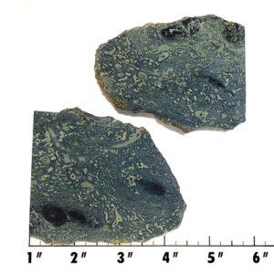 Slab219 - Kambaba Jasper slabs