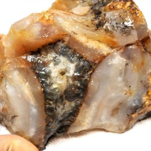 Regency Rose Plume Agate Rough #2