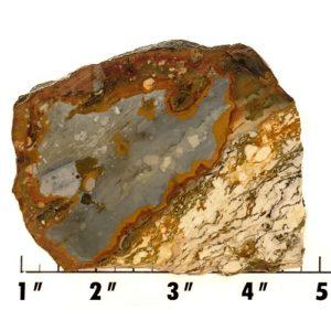 Slab1062 - Rocky Butte Jasper