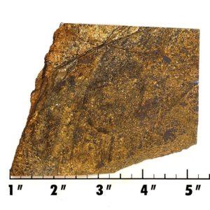 Slab1156 - Bronzite Slab