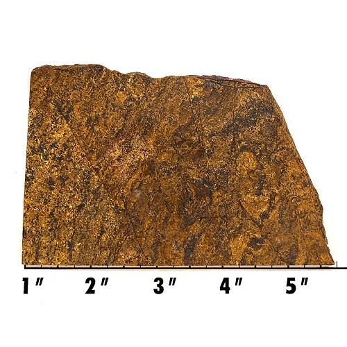 Slab1879 - Bronzite Slab
