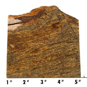 Slab1903 - Bronzite Slab