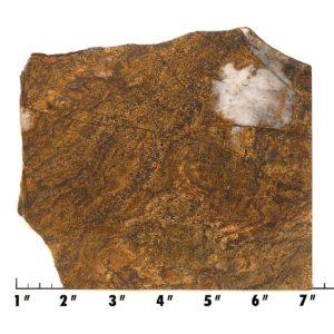 Slab1928 - Bronzite Slab