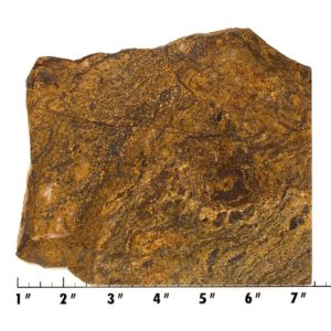 Slab1931 - Bronzite Slab