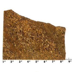 Slab714 - Bronzite Slab