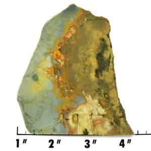Slab1670 - Rocky Butte Jasper