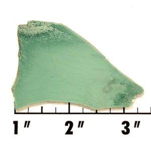 Slab1669 - Variscite Slab
