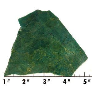Slab1786 - Hydrogrossular Garnet (Tansvaal Jade) Slab