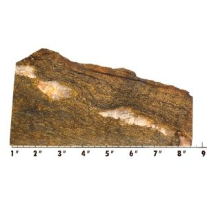 Slab1919 - Bronzite