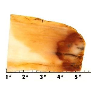 Slab2157 - Nephrite Jade Slab