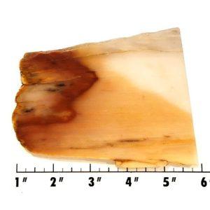 Slab2159 - Nephrite Jade Slab