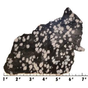 Slab1127 - Snowflake Obsidian Slab