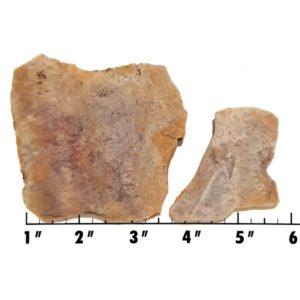 Slab1323 - Sagenite Agate Slabs