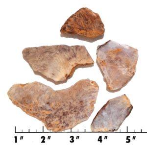 Slab1334 - Sagenite Agate Slabs