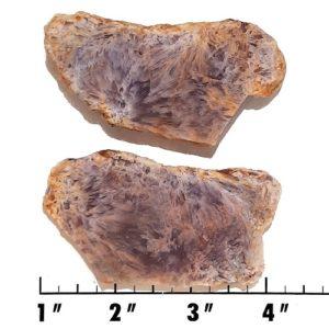Slab1360 - Sagenite Agate Slabs